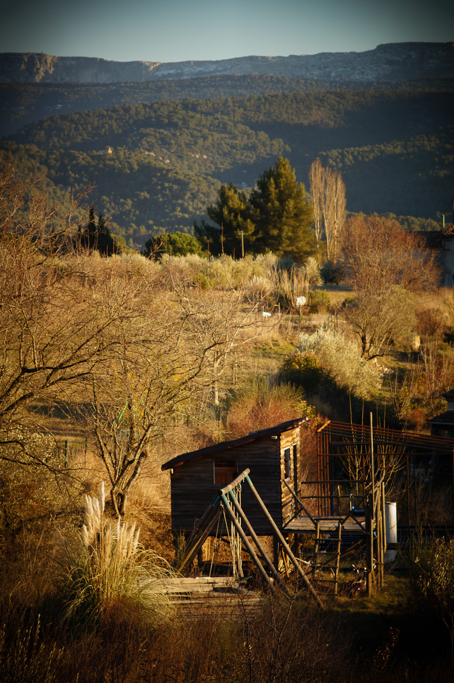 A children's cabin photographed in Toy Camera mode with the Sony NEX-5N and Leicam Elmarit-M 90/2.8