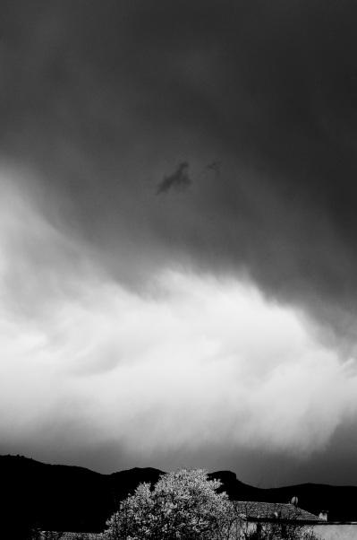 A white tree against a black mountain under a white cloud. Sony NEX-5n
