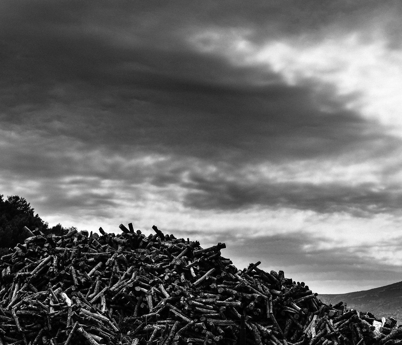 A pile of logs against an stormy sky. Olympus OM-D E-M5 & Olympus Digital Zuiko 45mm f1.8