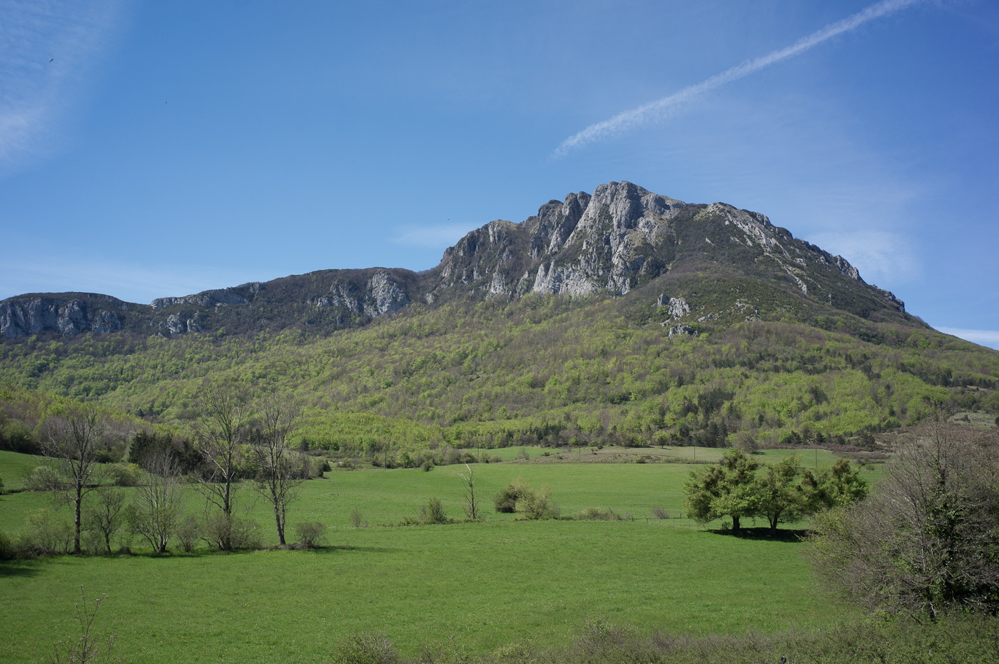 The green Valley of Bugarach