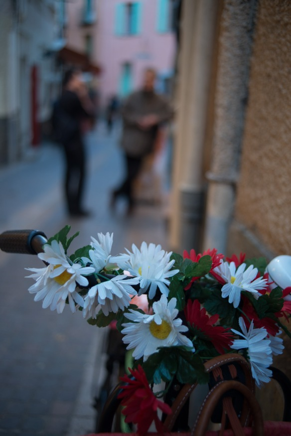 Flowery bike & smooth bokeh. Leica Summicron-R 35mm f/2