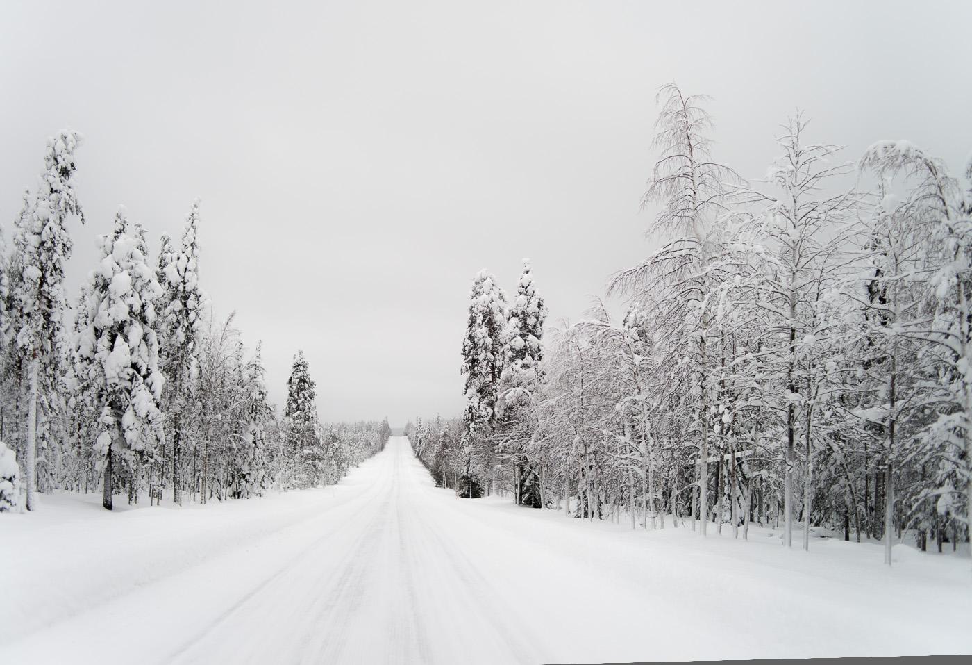 A snow coevered raod in Lapland. Nikon D800e & Leica Summicron-R 50