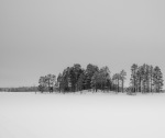 An island in a frozen lake in Lapland. Nikon D800e & Leica Summicron-R 50