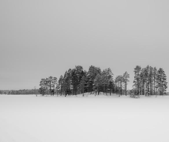 An island in a frozen lake in Lapland. Nikon D800e & Leica Summicron-R 50