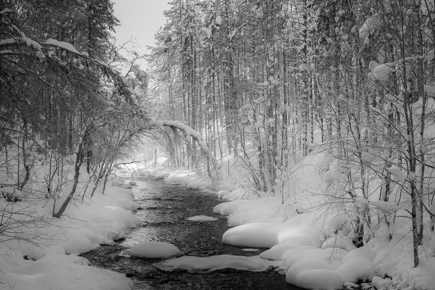 A river between snowy banks in Lapland. Nikon D800e and Leica-R Summicron 35