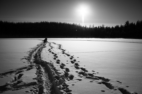 Hiking tracks in the snow on a frozen lake in Lapland - Nikon D800e & Leica Summicron-R 35mm