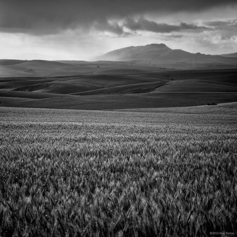 Looking east, morning shower. Caledon. Sony NEX-7, Leica 135mm f2.8 Elmarit.