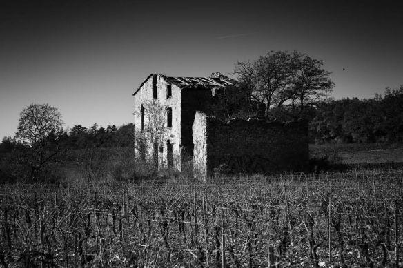 A ruin in Saint Maximin, France - Sony A7r & Leica Elmarit-R 90mm