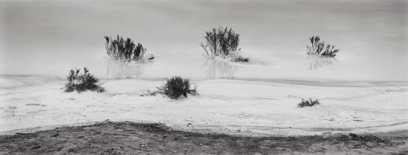 Near Guererro Negro, Baja California, 2003 (c) Michael Smith